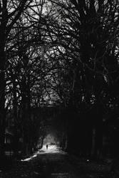 Towards The Promises Of Light by rev3rsed-singularity