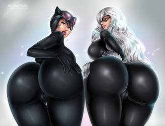 Catwoman vs. Black Cat: DC vs. Marvel by Flowerxl