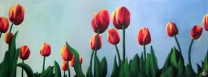 Tulipanes by mariapalitos68