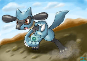 Request: Riolu Fights! by ECrystalica