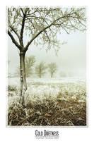 Cold Quietness by kil1k