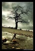 Forgotten tree by kil1k
