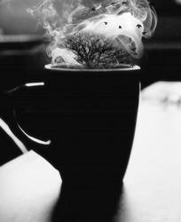 A Cup of Winterfell by UntamedUnwanted