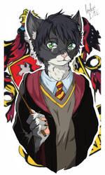 Furry Harry Potter by AleLoveless