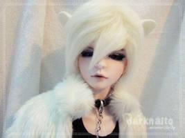 White Wolf by darknaito