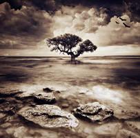 BeFore THE darken by 7usaM
