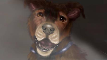 Woof by Tinyanimals