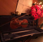 The Christmas light on the violin. by CamilaKL