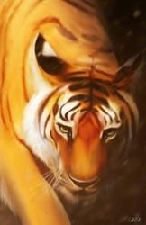 Tiger1 by EVBellDesign