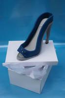 Tiffany shoe by Verusca
