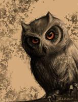 1/100 Owl sketch by JakubKrolikowskiART