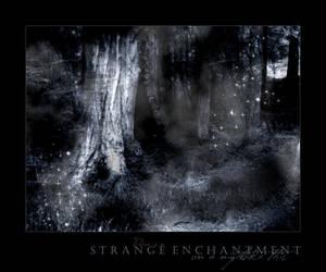 Strange Enchantment by lapislazuli