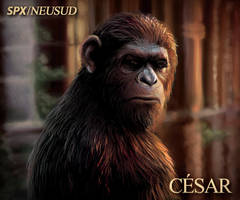 Caesar - Dawn of the planet of the apes by ALONESPINOXA