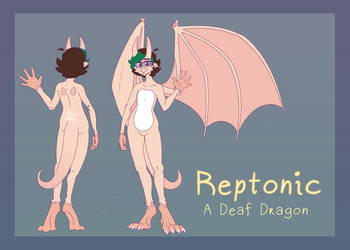 Reptonic Reference Sheet 2018 v2 Simple by Reptonic