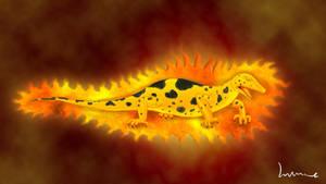 Salamander by Louisetheanimator