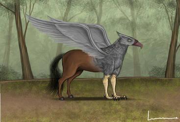 Hippogriff by Louisetheanimator