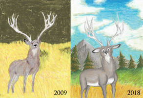 Draw It Again - Mule Deer Stag by Louisetheanimator