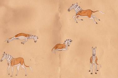 Quagga Sketches 1 by Louisetheanimator