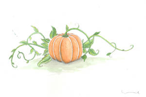 Pumpkin With Vines by Louisetheanimator
