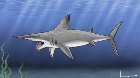 Helicoprion by Louisetheanimator