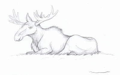 Moose Lying Down by Louisetheanimator