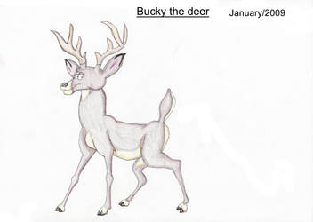 Bucky the Deer by Louisetheanimator
