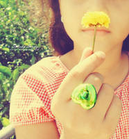 Look It's Summer by Sireysi