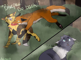:The Fight: by ArexStar