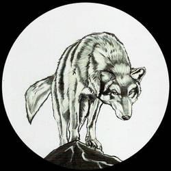 Wolf Commish by kaliburstudio