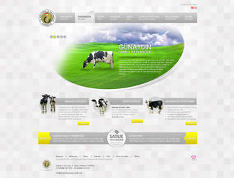 Gunaydin Company Web Interface Design by mansonloverz