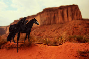 The Desert Warden by Timely-Studios