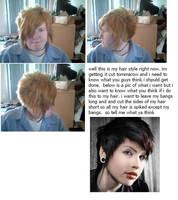 hair style. help by drfranknfurter0