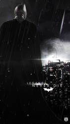 The Dark Knight Vengeance. by DavidMellado