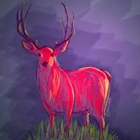 Deer by SaharaKnoblauch