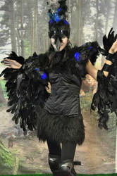 Crow costume by Emma030