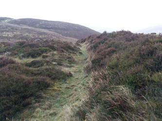 Foggy hillsF14 by moonrosy