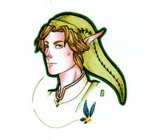 Link by Nenril-Tf