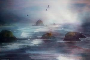 nallas cove by HippieVan57