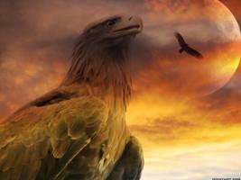 bird of jove by HippieVan57