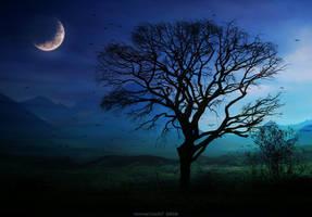 sentimental dream by HippieVan57