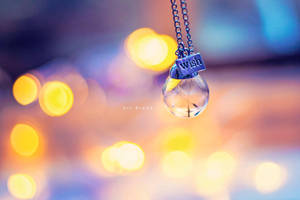 Wishes by Dedina89