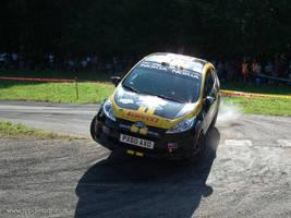 Ford Fiesta WRC by jypdesign