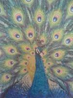 Peacock Canvas  ,medium . Acrylic ,glitter Glu by darrenTyrie