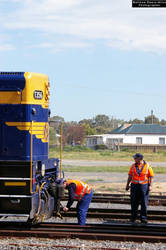train crew with T356 by mattrawls