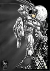 batman by captokyo