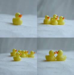 Duck by Vegasbride