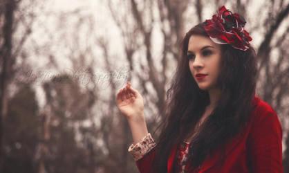 Wonderland  by JosefinaPhotography