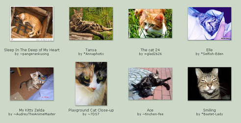 September 11 Submissions by KittyCatCult