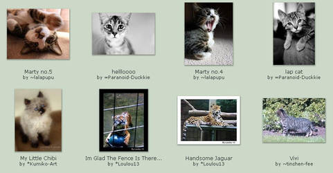 September 12 Submissions by KittyCatCult