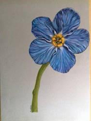 flor by OlhosVerdes
